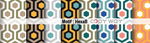 HexaB